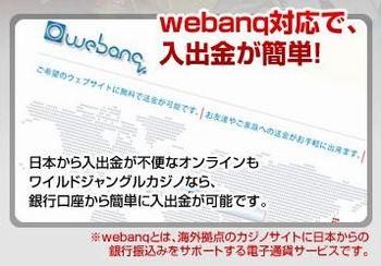 WS001584 webanq